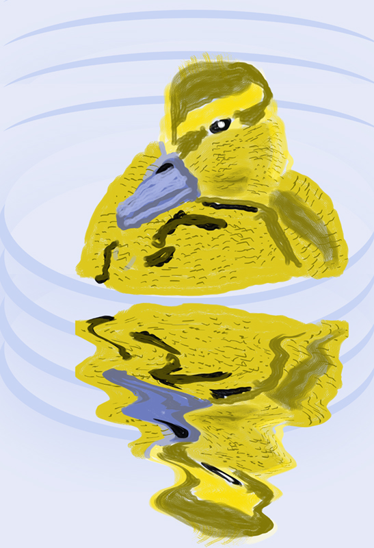 Digital drawing of a yellow duckling swimming. Its image is reflected in the water.